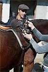 Person Saddles A Horse, Close-up, Baranja, Croatia, Europe