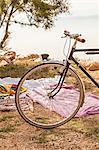 Croatia, Dalmatia, At the seaside, bike in foreground