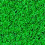Seamless Tileable Texture of Grass.