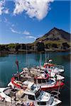 Boats at Dock, Arnarstapi, Vesturland, Snaefellsnes Peninsula, Iceland