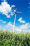 Wind turbine on field, low angle view