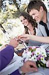 Wedding Celebration, Wedding Guests Toasting, Croatia, Europe