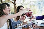 Wedding Celebration, Outdoors, Croatia, Europe