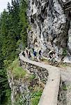 Group Of Mountain Bikers, Schattwald, Bavaria, Germany