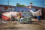 Ice Cream Cart in street of Deshnoke, India