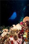 Swim through, Dominica, West Indies, Caribbean, Central America