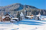 Gosau in winter, Gosau, Salzkammergut, Austria, Europe
