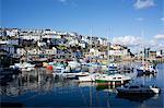 Harbour, Brixham, Devon, England, United Kingdom