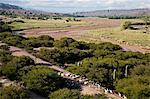 Landscape of the Quebrada de Humahuaca, UNESCO World Heritage Site, Jujuy Province, Argentina, South America
