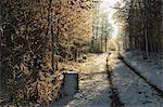 Rural winter scene, near Villingen-Schwenningen, Baden-Wurttemberg, Germany, Europe