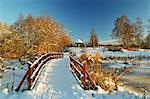 Winter scene, Schwenninger Moos nature reserve, Villingen-Schwenningen, Baden-Wurttemberg, Germany, Europe