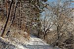 Black Forest in winter, near Villingen-Schwenningen, Baden-Wurttemberg, Germany, Europe