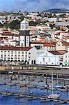 Main Church clock tower, Ponta Delgada City, Sao Miguel Island, Azores, Portugal, Atlantic, Europe