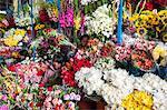 Flowers in local market Cuzco, Peru, South America