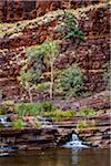 Dales Gorge, Karijini National Park, The Pilbara, Western Australia, Australia