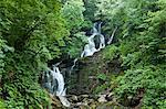 Killarney National Park, Torc Waterfall