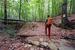Europe, Bulgaria, Black Sea Coast, hiker in Strandzha National Park (MR)