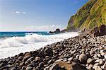 Dominica, Delices. The wild Atlantic Coast at Jungle Bay Resort & Spa.