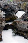 Iceland, Barnafoss waterfall