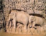 Asia, India, Tamil Nadu. Mahabalipuram (Mamallapuram).  Bhagiratha's Penance, Descent of the Ganga, sometimes referred to as Arjuna's Penance.
