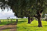 Walking trail near Arraiolos. Alentejo (MR)
