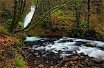 Brideal Veil Falls and Creek