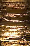 Golden sea
