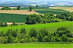 Rural landscape, Hokkaido