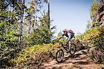 Man mountain biking through forest