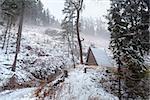 wooden hut in snow in Harz mountains