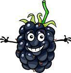 Cartoon Illustration of Funny Blackberry Fruit Food Comic Character