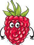 Cartoon Illustration of Funny Raspberry Fruit Food Comic Character