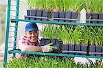 Mature sales assistant arranging shelves of plants in garden centre