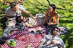 Four friends having picnic on blanket