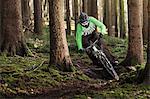 Mountain biker riding through trees
