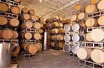 Wooden wine barrels in vineyard