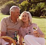 Senior Couple Enjoying a Picnic in a Park