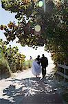 Bride and groom walking along footpath, rear view