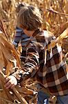 Two boys (4-5) running through cornfield, rear view