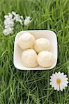 White chocolate truffles in artificial grass
