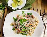 Noodle salad with beef (Vietnam)