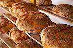 Freshly baked poppy seed bread on wooden shelving