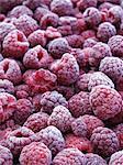 Lots of frozen raspberries