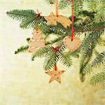 Christmas cookies hanging on a Christmas tree