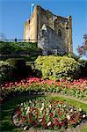 Spring flowers in ornamental beds decorate Guildford Castle, Guildford, Surrey, England, United Kingdom, Europe