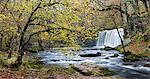 Sgwd Ddwli waterfall on the Nedd Fechan river near Ystradfellte, Brecon Beacons National Park, Powys, Wales, United Kingdom, Europe