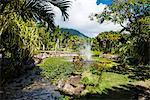 Botanical Gardens on Nevis Island, St. Kitts and Nevis, Leeward Islands, West Indies, Caribbean, Central America