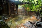 Hot pool in the Kurokawa onsen, public spa, Kyushu, Japan, Asia