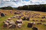 Viking burial ground, Lindholm Hoje, Aalborg, Jutland, Denmark, Scandinavia, Europe