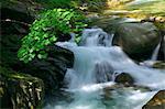 Mountain stream, Yamagata Prefecture